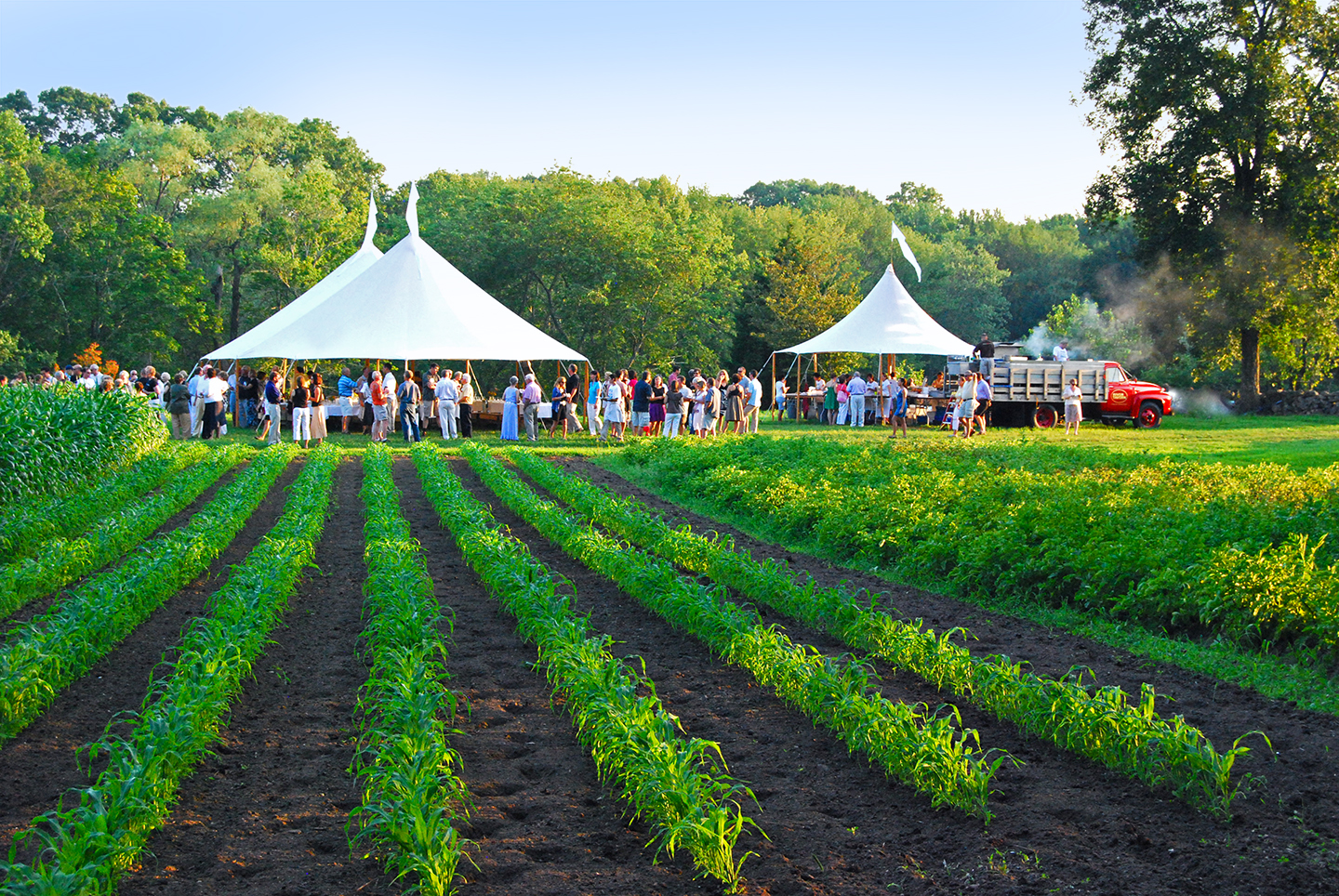 Farm To Table Feasts Visit Ct