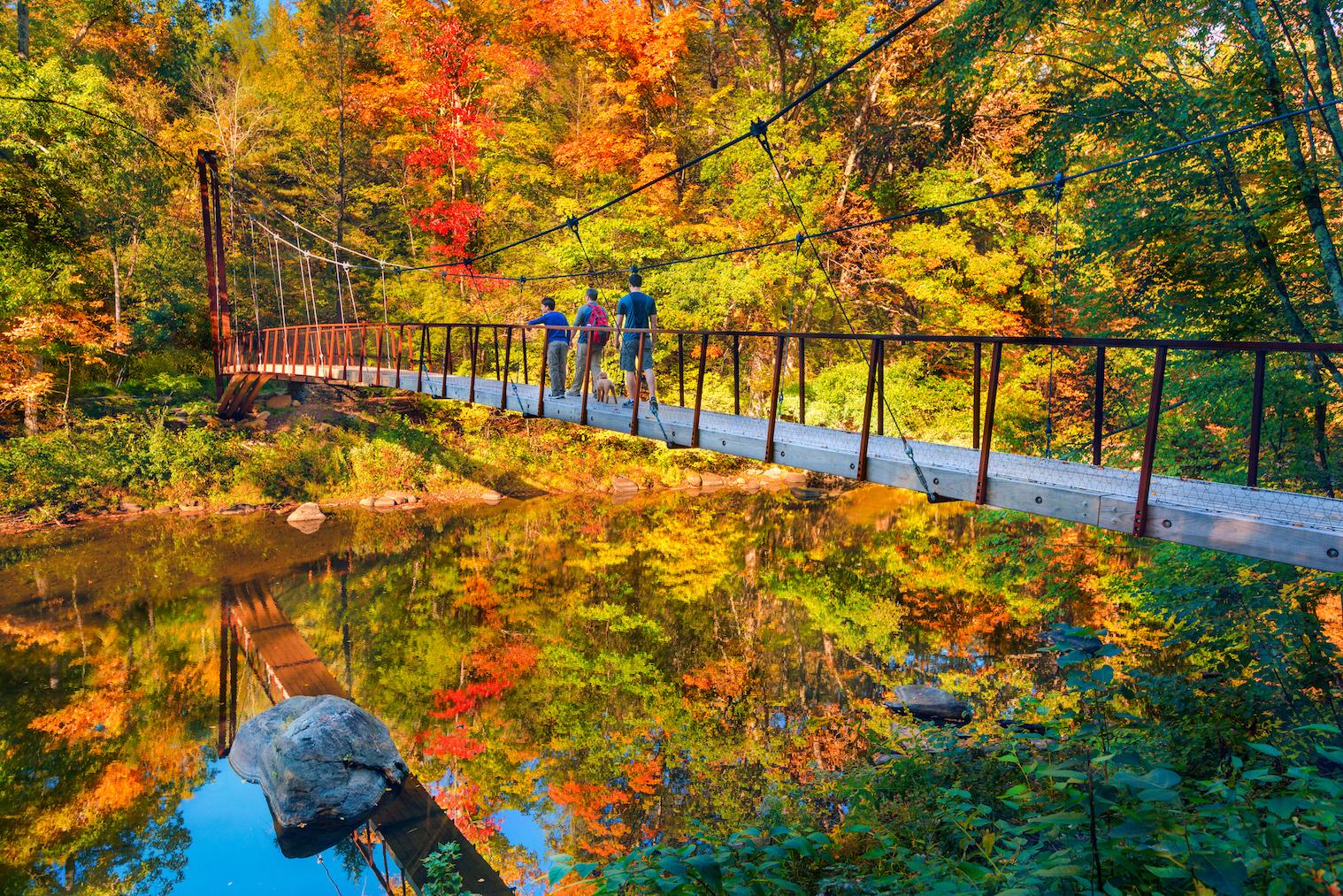 Vibrant Fall Foliage Seasonal Experiences Set To Wow