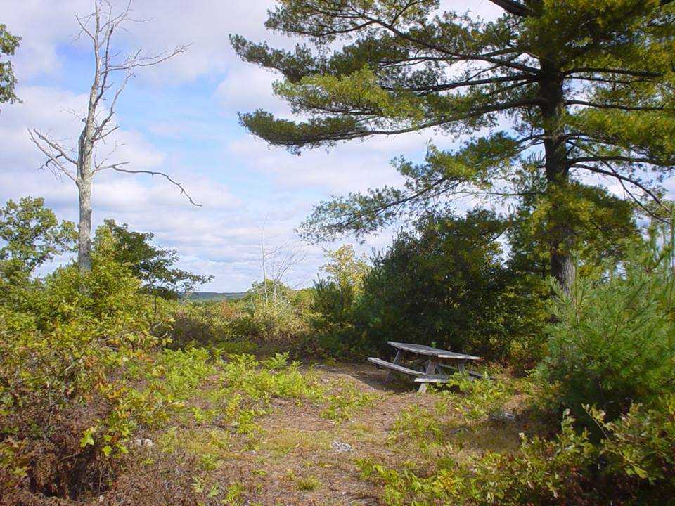 Pachaug State Forest Campgrounds | Visit CT