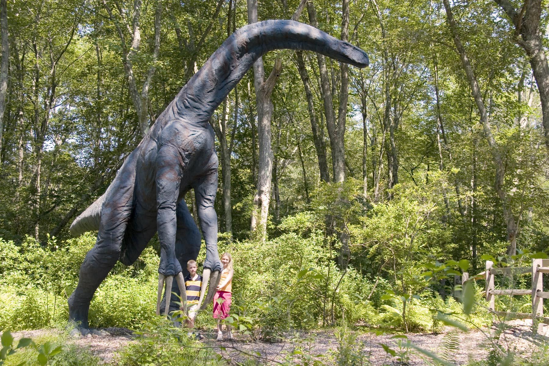 Connecticut Dinosaur Trail Visit Ct
