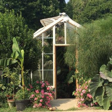 Logees Greenhouses Visit Ct
